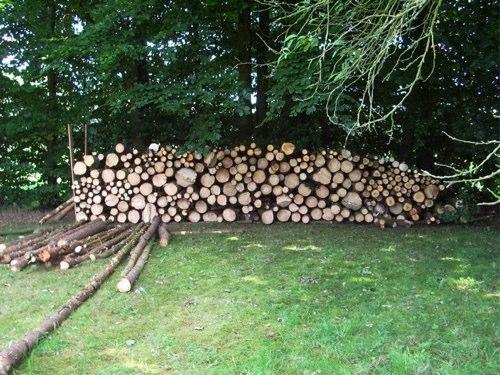 Wald urbar gemacht